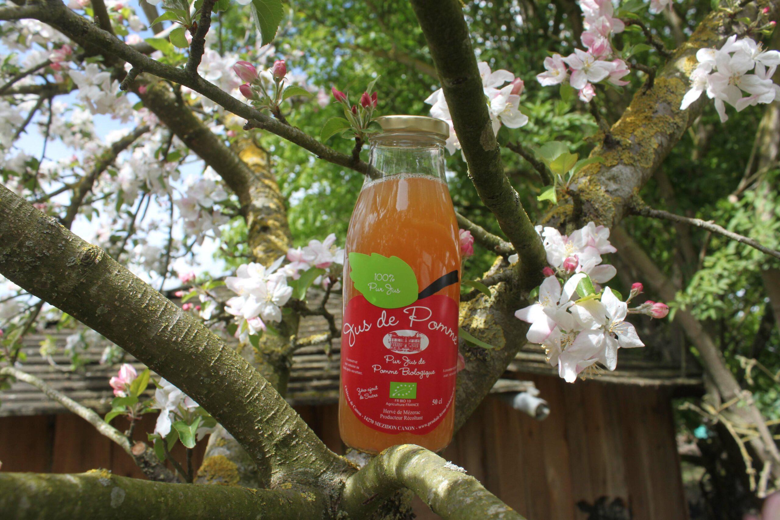 us de pommes bio 100% pur jus en direct producteur depuis la ferme du Domaine de Ouézy en Normandie