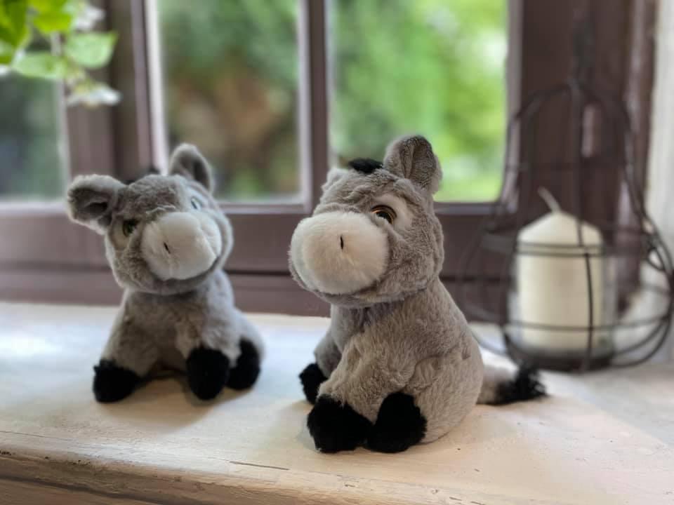 peluche ânes en vente libre dans notre ferme pédagogique, idée cadeau pour enfants petits et grands en normandie