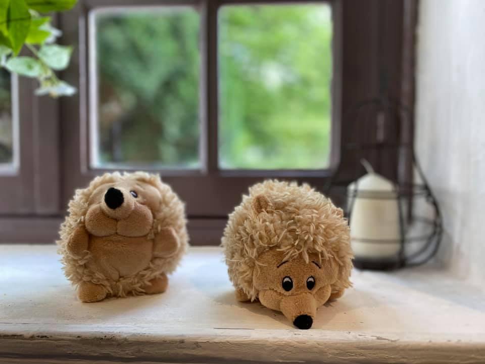 peluche hérissons en vente libre dans notre ferme pédagogique, idée cadeau pour enfants petits et grands en normandie