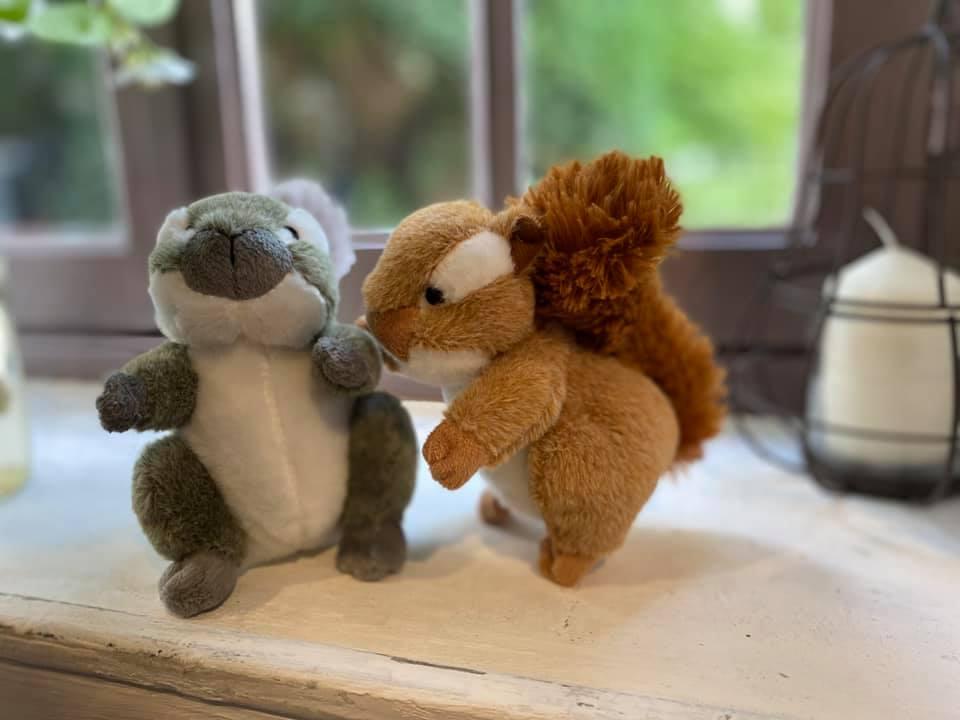peluche écureuils en vente libre dans notre ferme pédagogique, idée cadeau pour enfants petits et grands en normandie