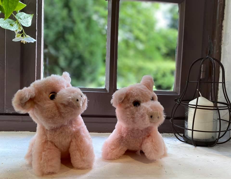 peluche en vente libre dans notre ferme pédagogique, idée cadeau pour enfants petits et grands en normandie